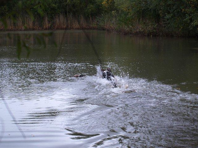Wassergewöhnungstag in Krauchenwies